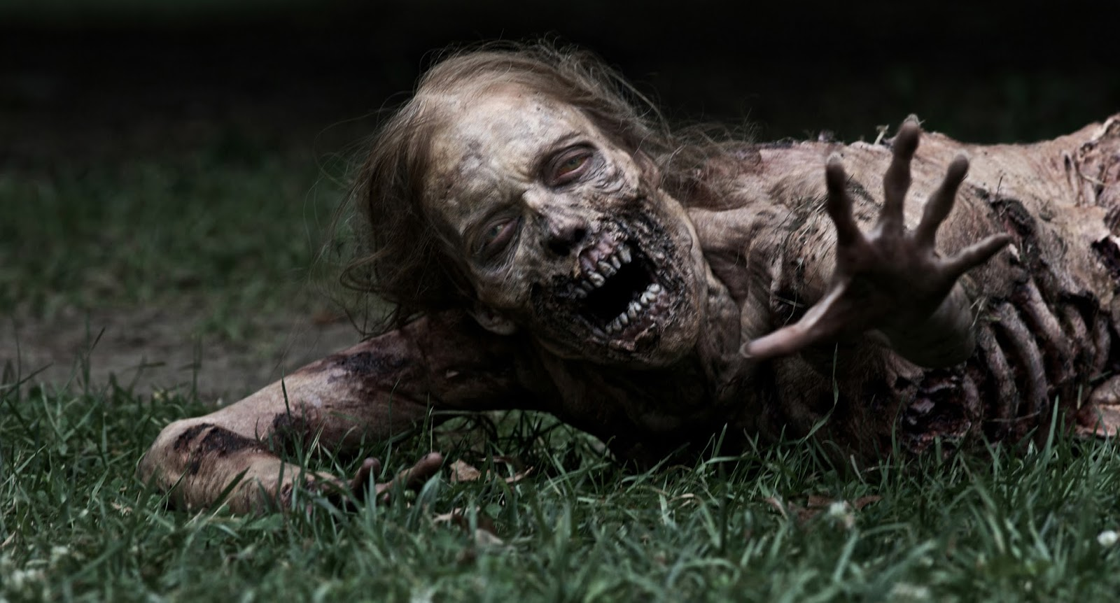 which-walking-dead-character-are-you