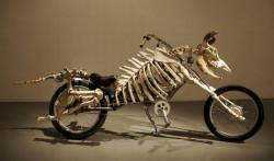 Велосипед, как транспорт постапокалипсиса!