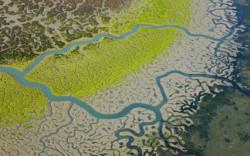 река и её притоки