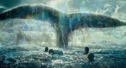 кит и люди в воде