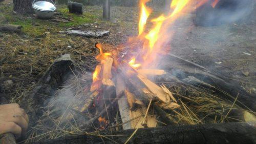 мокрый лес костер