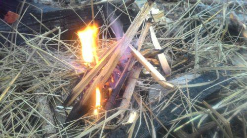 разведение костра в сыром лесу