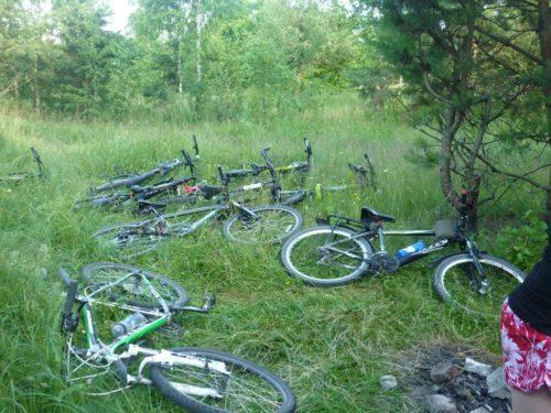 велотуристы против мусора в лесу