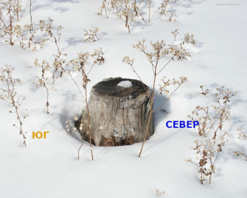 снег метод ориентирования