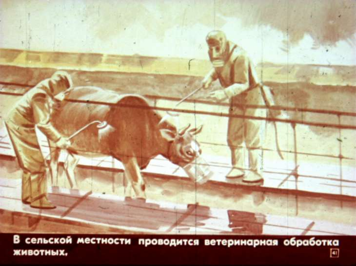 санитарная обработка животных