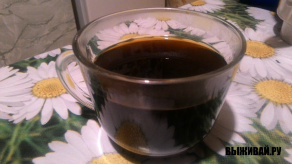 суррогат кофе из одуванчика