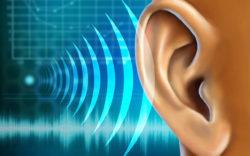 ориентирование по звукам
